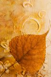 Pressed leaf. In front of artwork, artwork in the back is created and painted by myself Royalty Free Stock Images