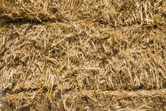 Pressed rye straw. Bales of compressed straw rye close-up shot Royalty Free Stock Photography