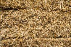 Pressed rye straw Royalty Free Stock Photography