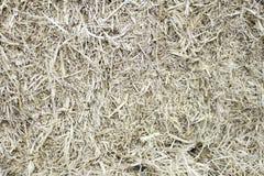 Pressed straw Stock Photo