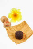 The pressed tea removed against a yellow flower Stock Image
