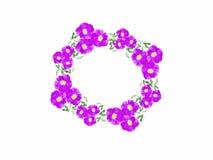 Pressione as flores que roxas a grinalda é usada em ocasiões especiais ou no dia especial tendo um fundo branco ilustração stock