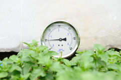 Pressure gauge in bushes. Royalty Free Stock Photography