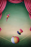 Prestaties van een papegaai, een bal en een hoed. Stock Foto