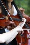 Prestazione del violino Fotografie Stock Libere da Diritti