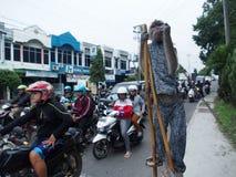 Prestazione della scimmia della via Fotografia Stock