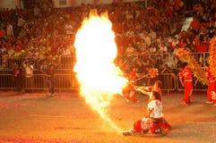 Prestazione di fuoco dalle troupe del Lion Dance Immagine Stock