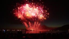 Prestazione variopinta luminosa di pirotecnica di manifestazione dei fuochi d'artificio archivi video