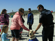 Preste serviços de manutenção ao cão no treinamento com a multidão em Mardi Gras Parade descalço foto de stock