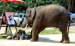Presteren de Aziatische olifanten van Thailand ` s Stock Fotografie