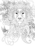 Prestigious lion coloring page Stock Images