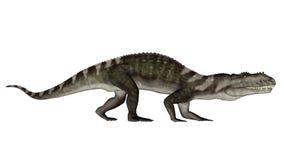 Prestosuchus dinosaur walking - 3D render Stock Images