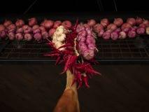 Presunto espanhol tradicional do jamon, pendurando ao lado das pimentas de piment?o e das cebolas fotografia de stock royalty free
