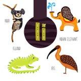Pret dierlijke brieven van het alfabet voor de ontwikkeling en het leren van peuterkinderen Reeks leuke bos, binnenlands en marie Royalty-vrije Stock Foto's
