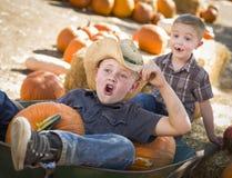 Pret Kleine Jongens die in Kruiwagen bij het Pompoenflard spelen Stock Afbeeldingen