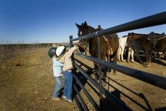 Pret met paarden Royalty-vrije Stock Foto's