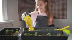 Pret weinig tuinmanzorg voor installaties Leuk weinig kindmeisje die zaailingen planten De lenteconcept, aard en zorg stock video