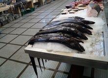 Preta d'Espada - carbo d'aphanopus - fruits de mer spéciaux de la Madère Images stock