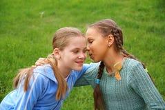 Preteen girls talking Royalty Free Stock Photos