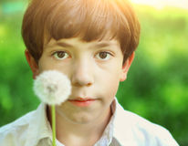 Preteen handsome boy blow with dandelion Royalty Free Stock Photography