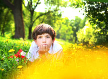 Preteen handsome boy in dandellion park Royalty Free Stock Photography