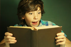 Preteen hansome boy reading book Royalty Free Stock Photography