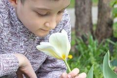 A preteen Kaukasische jongen die witte tulpenbloem in de de lentetuin ruiken stock afbeeldingen