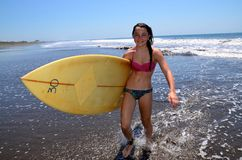 Preteen Surfer Girl with Surfboard Stock Images