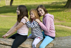 Pretending. Three young girls sit astride a log playing pretend. The are obviously close friends and are happy to be together. The eldest happened to look across Stock Image