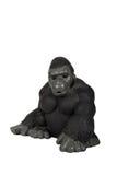 Preto do orangotango do brinquedo Imagens de Stock Royalty Free