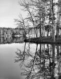 Preto e branco de reflexões do inverno foto de stock royalty free