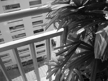 Preto e branco do condomínio urbano fotografia de stock