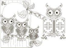 Preto e branco estilizado lê a coruja e os filhotes de coruja na árvore, mão tirada Foto de Stock