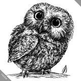 Preto e branco grave a ilustração isolada do vetor da coruja ilustração stock