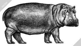 Preto e branco grave a ilustração isolada do vetor do hipopótamo ilustração royalty free