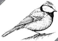 Preto e branco grave a ilustração isolada do vetor do melharuco ilustração do vetor