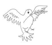 Preto e branco - pomba ilustração do vetor