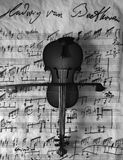 Preto e branco Violine Foto de Stock