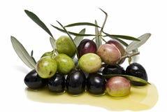 Preto e greenolives no petróleo verde-oliva. Imagens de Stock