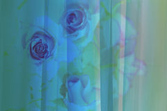 Pretty abstract floral background Stock Photos