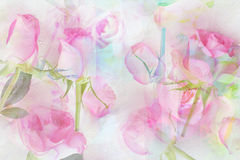 Pretty abstract rosy background Stock Photography