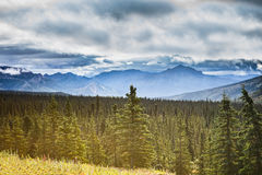 Pretty Alaskan Landscape in Denali National Park Royalty Free Stock Image
