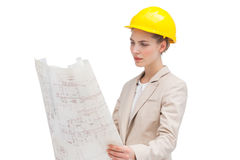 Pretty architect examining construction plan. A pretty architect with a helmet examining construction plan Stock Photography