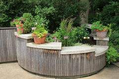 Pretty area of backyard, with garden shelves in curved wood structure. Signs of Springtime, with pretty backyard garden that features curving wood structure and Royalty Free Stock Photos
