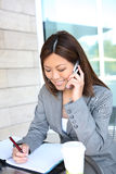 Pretty Asian Business Woman stock images