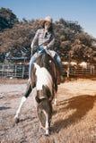 Pretty Asian woman cowgirl riding a horse outdoors in a farm. Stock Photos