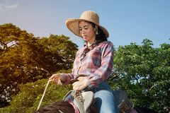 Pretty Asian woman cowgirl riding a horse outdoors in a farm. Stock Images
