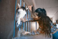 Pretty Asian woman petting horse in a farm. Stock Photo