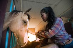 Pretty Asian woman petting horse in a farm. Royalty Free Stock Photos