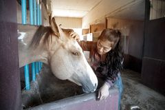 Pretty Asian woman petting horse in a farm. Stock Photos
